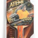 atemi20000